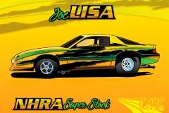 lisa-rcr-v01b
